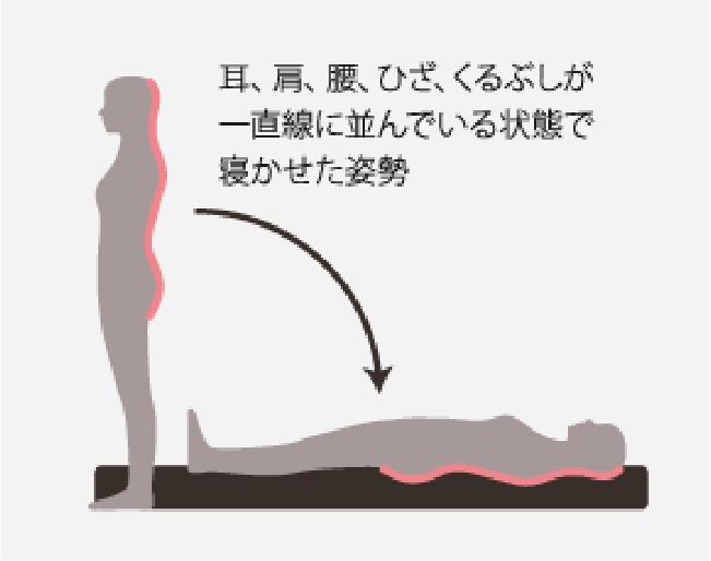 耳、肩、腰、ひざ、くるぶしが一直線に並んでいる状態で寝かせた姿勢