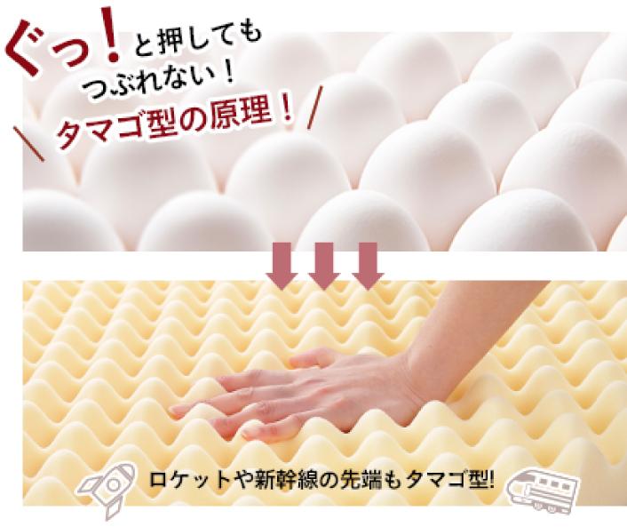 卵型の原理
