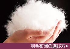 羽毛布団の選び方