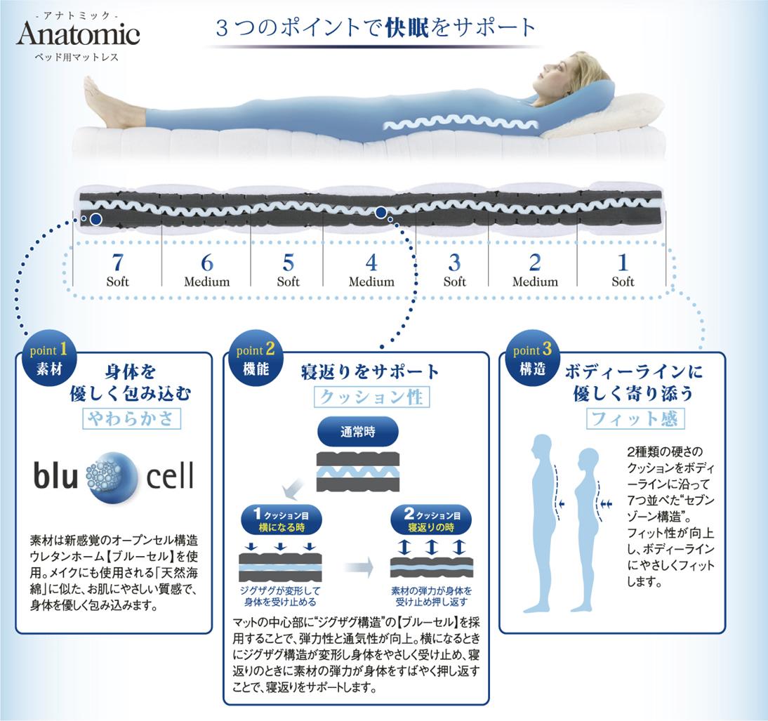 身体の部位ごとに異なる硬さのウェーブ構造